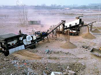 stings in india spare parts for crusher